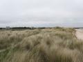 Dune mobile_ALI.jpg