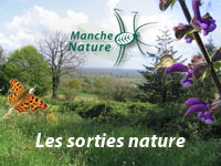 vignette-sorties-nature