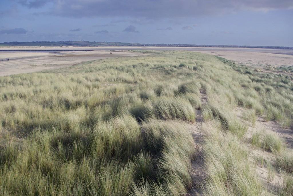 La dune mobile progresse à la pointe d'Agon