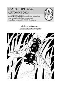 Argiope42
