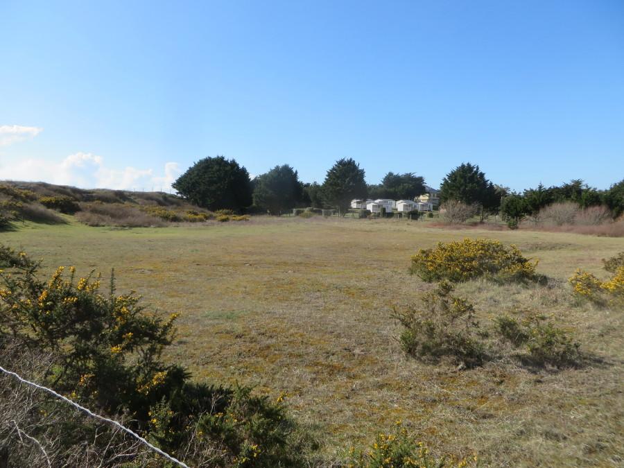 Cette parcelle n°248 présente un intérêt écologique certain. Elle abrite la dernière station de saule rampant, Salix repens, sur le site de la pointe d'Agon et au moins un des insectes qui sont associés à cet habitat, très rare pour le département.