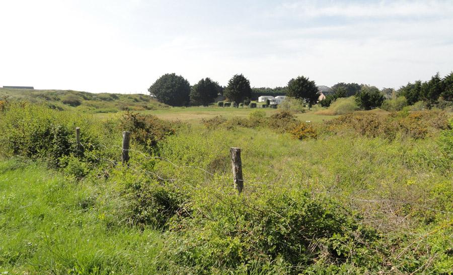 On y retrouve trois habitats Natura 2000, la dune fixée (habitat prioritaire), les fourrés dominés par l'ajonc d'Europe et les dépressions à saule rampant.