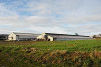 Montbray, élevage concentrationnaire