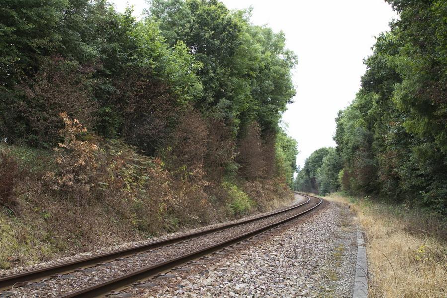 Traitement défoliant SNCF_Saint-Gilles_2016-08-07 14-50-39
