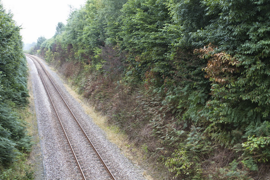 Traitement défoliant SNCF_Savigny_2016-08-07 14-13-01