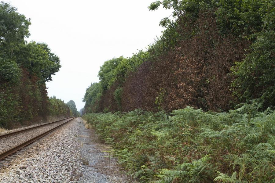Traitement défoliant SNCF_Savigny_2016-08-07 14-20-22