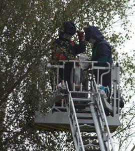 Intervention des pompiers dans le Coutançais (photo Philippe Scolan)